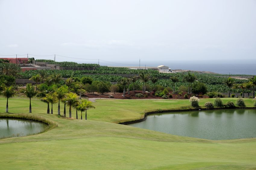 golf course in tenerife