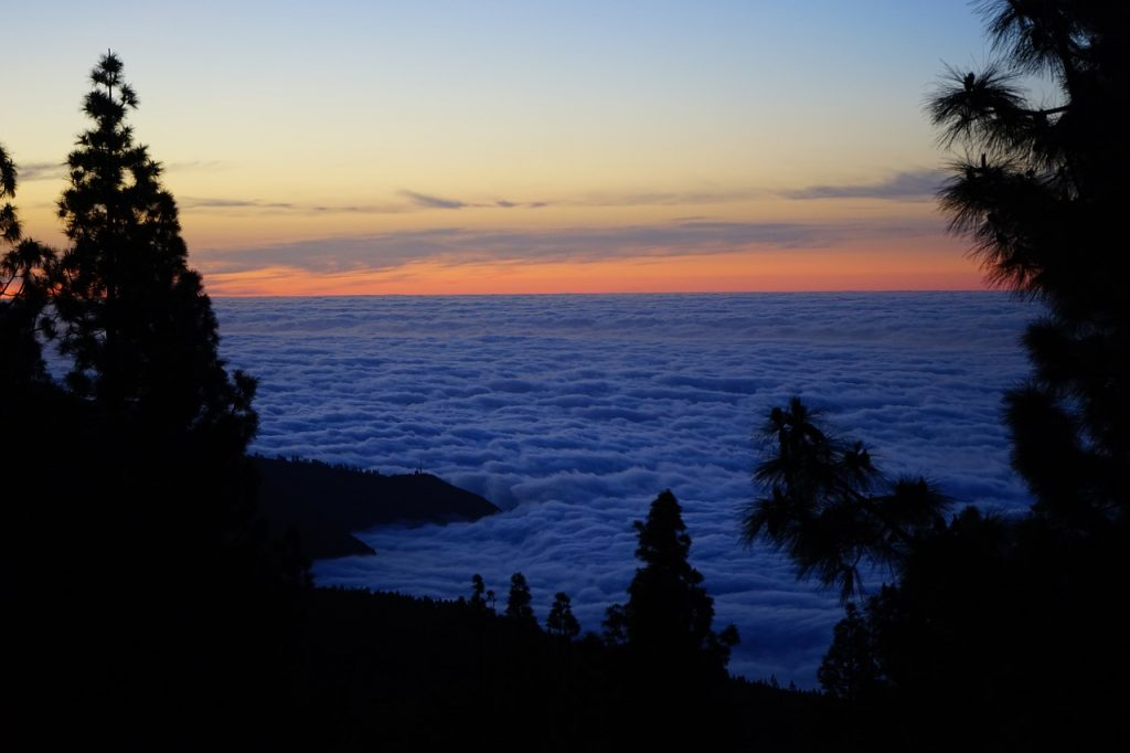 tenerife sea of clouds