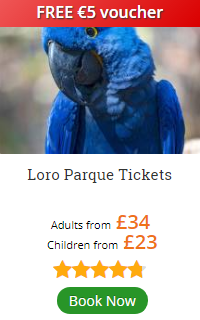 Loro Parque Excursion